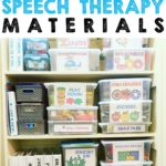 Speech Therapy organization for the end of the school year
