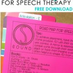 Articulation Books for S sounds in speech therapy